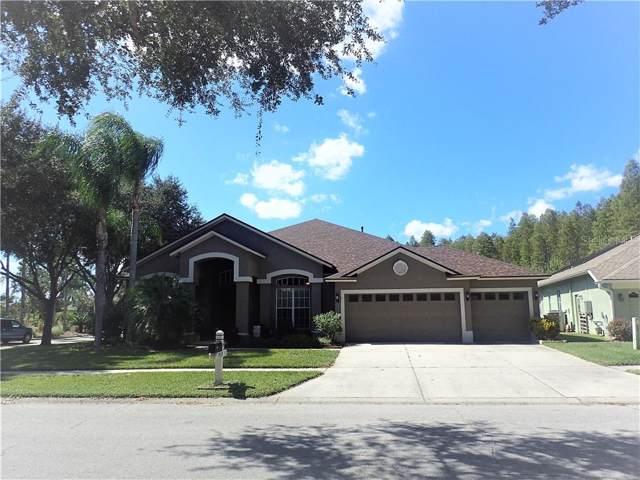 19337 Wind Dancer Street, Lutz, FL 33558 (MLS #T3204288) :: Andrew Cherry & Company
