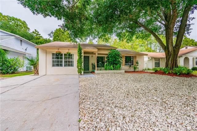 15926 Winding Drive, Tampa, FL 33624 (MLS #T3204341) :: Cartwright Realty