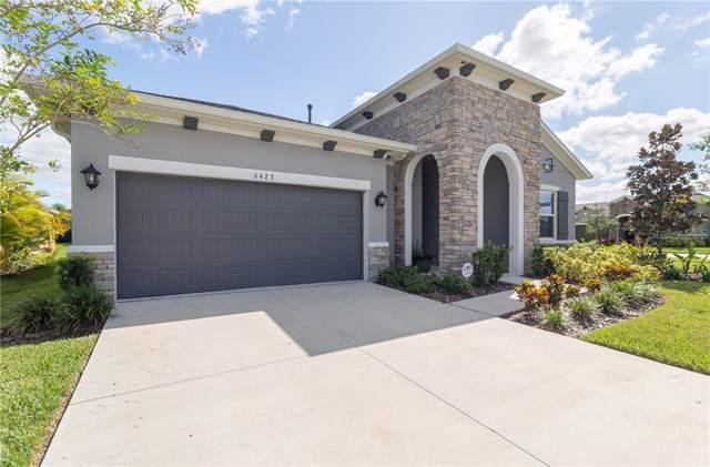 6423 Salt Creek Avenue, Apollo Beach, FL 33572 (MLS #T3204349) :: Dalton Wade Real Estate Group