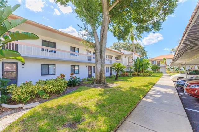 138 Lakeview Way, Oldsmar, FL 34677 (MLS #T3204374) :: Cartwright Realty
