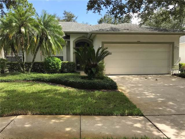 19027 Callaway Court, Tampa, FL 33647 (MLS #T3204384) :: Cartwright Realty
