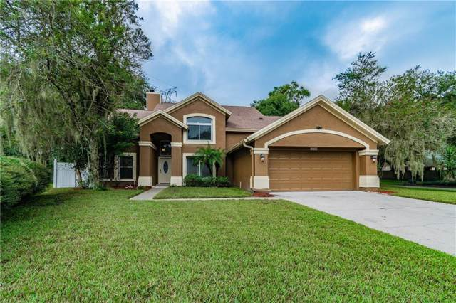 16104 Canton Court, Tampa, FL 33647 (MLS #T3204397) :: Cartwright Realty