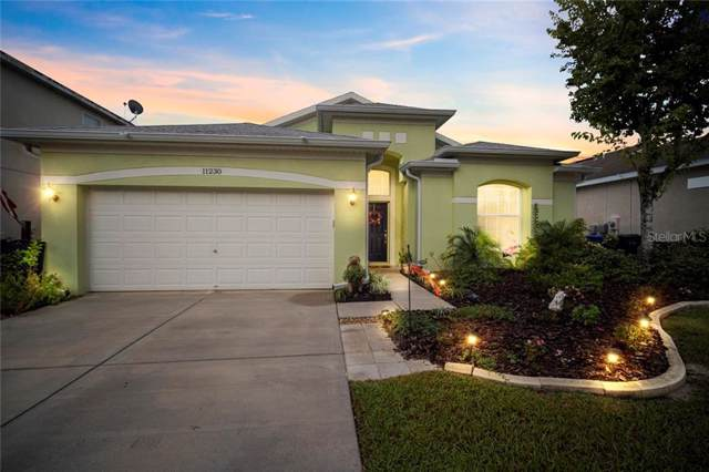 11230 Madison Park Drive, Tampa, FL 33625 (MLS #T3204414) :: 54 Realty