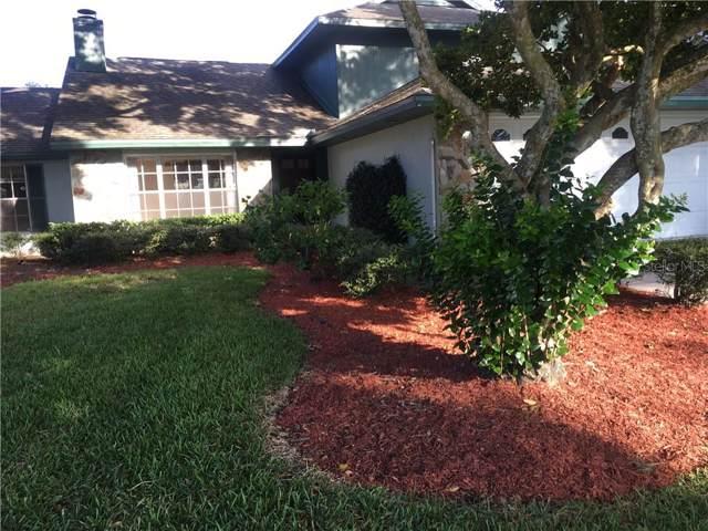15107 Nighthawk Drive, Tampa, FL 33625 (MLS #T3204416) :: Cartwright Realty