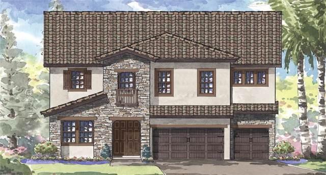 11227 Hawks Fern Drive, Riverview, FL 33578 (MLS #T3204511) :: Cartwright Realty