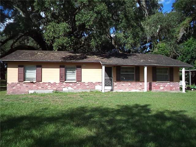 36751 Palm, Dade City, FL 33525 (MLS #T3204512) :: 54 Realty