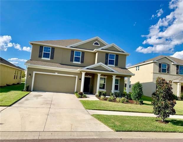 10546 Park Meadowbrooke Drive, Riverview, FL 33578 (MLS #T3204527) :: Team Bohannon Keller Williams, Tampa Properties