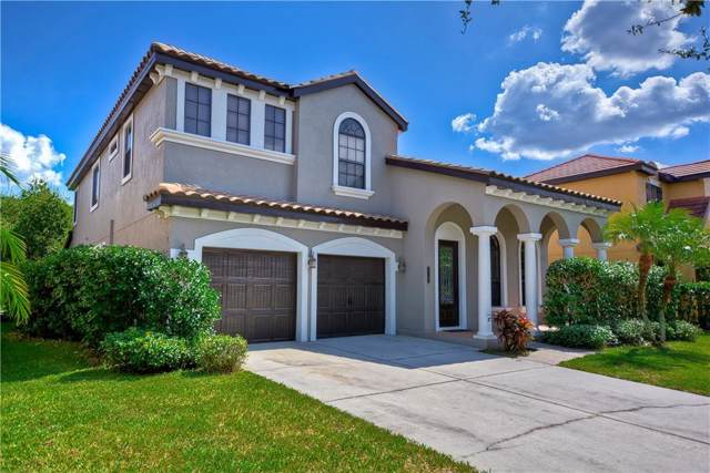 20345 Chestnut Grove Drive, Tampa, FL 33647 (MLS #T3204537) :: Team Bohannon Keller Williams, Tampa Properties