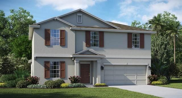 257 Taft Drive, Davenport, FL 33837 (MLS #T3204624) :: Baird Realty Group