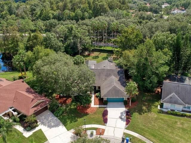 5309 Ambrose Court, Tampa, FL 33647 (MLS #T3204639) :: Team Bohannon Keller Williams, Tampa Properties