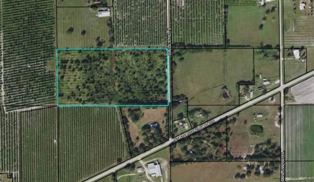 S Bailey Road, Wauchula, FL 33873 (MLS #T3204650) :: Cartwright Realty
