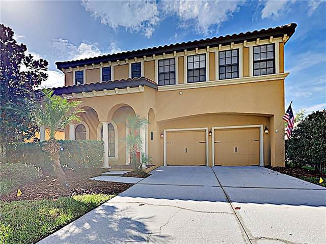 20313 Chestnut Grove Drive, Tampa, FL 33647 (MLS #T3204662) :: Team Bohannon Keller Williams, Tampa Properties