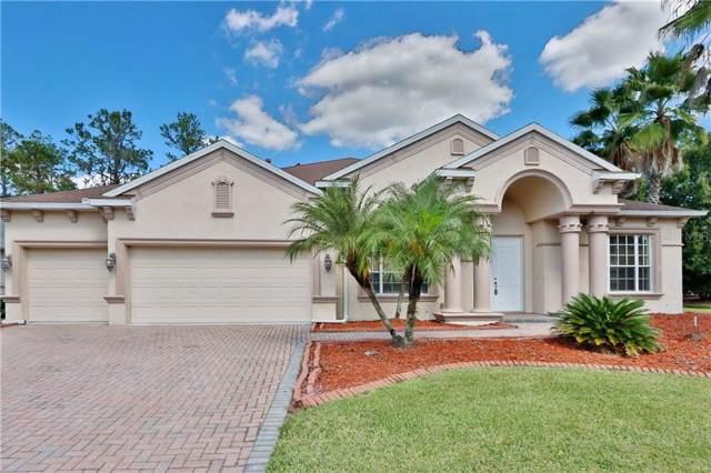 27539 Pine Point Drive, Wesley Chapel, FL 33544 (MLS #T3204666) :: Team Bohannon Keller Williams, Tampa Properties