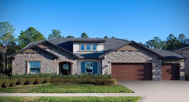6143 Marsh Trail Drive, Odessa, FL 33556 (MLS #T3204703) :: Cartwright Realty