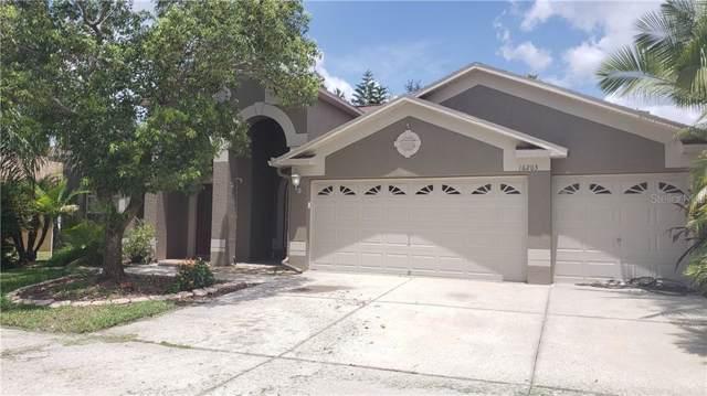 16203 Muirfield Drive, Odessa, FL 33556 (MLS #T3204749) :: GO Realty