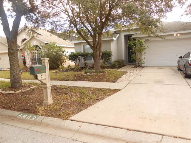 6803 Monarch Park Drive, Apollo Beach, FL 33572 (MLS #T3204801) :: Medway Realty