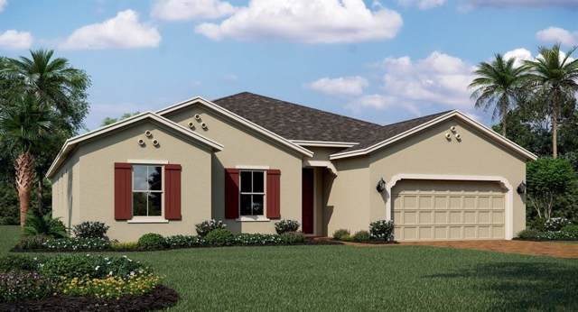 1714 Lake Sims Parkway, Ocoee, FL 34761 (MLS #T3204803) :: 54 Realty