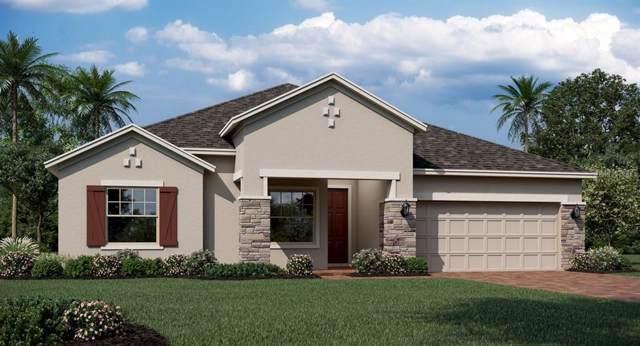 1730 Lake Sims Parkway, Ocoee, FL 34761 (MLS #T3204806) :: 54 Realty