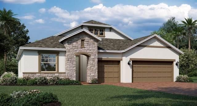 1841 Lake Sims Parkway, Ocoee, FL 34761 (MLS #T3204814) :: 54 Realty