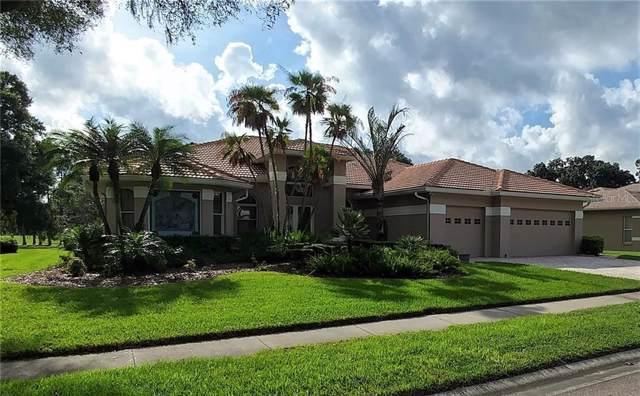 16314 Byrnwyck Lane, Odessa, FL 33556 (MLS #T3204834) :: Kendrick Realty Inc