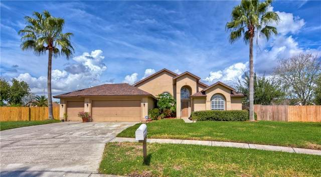 1401 Dinsmore Place, Brandon, FL 33511 (MLS #T3204835) :: Bustamante Real Estate