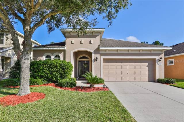 30541 Latourette Drive, Wesley Chapel, FL 33545 (MLS #T3204882) :: Cartwright Realty