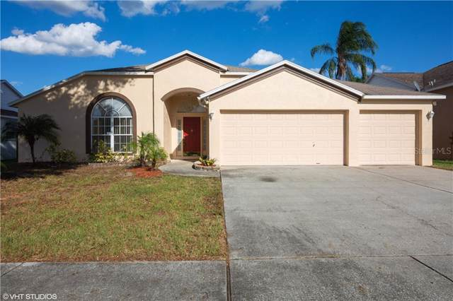 9814 La Rita Place, Riverview, FL 33569 (MLS #T3204939) :: Cartwright Realty