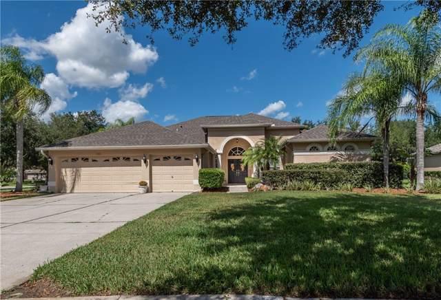 7502 Dunbridge Drive, Odessa, FL 33556 (MLS #T3204943) :: 54 Realty