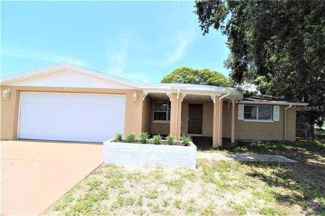 3613 Eisenhower Dr, Holiday, FL 34691 (MLS #T3204950) :: Prestige Home Realty