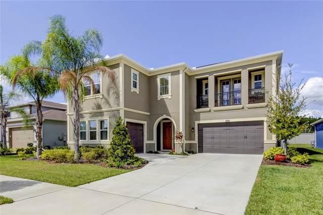 31881 Rothbury Court, Wesley Chapel, FL 33543 (MLS #T3205004) :: Baird Realty Group