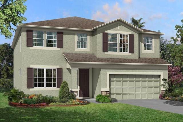 10134 Tuscan Sun Avenue, Riverview, FL 33578 (MLS #T3205039) :: Cartwright Realty