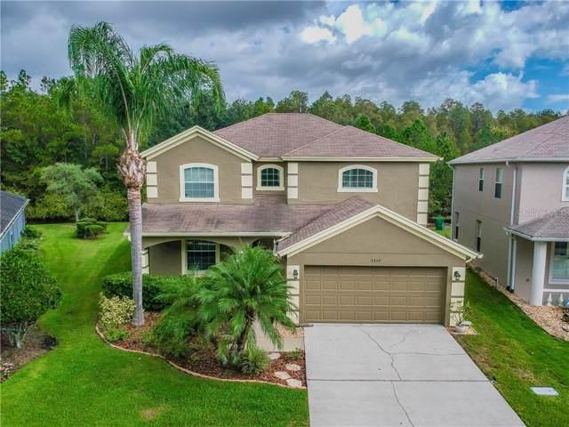 3327 Sisal Loop, Wesley Chapel, FL 33544 (MLS #T3205061) :: The Robertson Real Estate Group