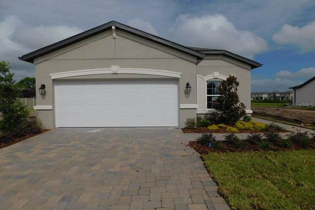 19660 Leonard Road, Lutz, FL 33558 (MLS #T3205065) :: Gate Arty & the Group - Keller Williams Realty Smart
