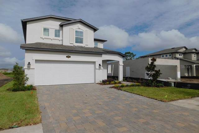 19165 Leonard Road, Lutz, FL 33558 (MLS #T3205090) :: Gate Arty & the Group - Keller Williams Realty Smart