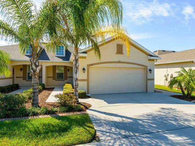 2138 Parrot Fish Drive, Holiday, FL 34691 (MLS #T3205111) :: Griffin Group