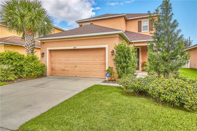 8821 Deep Maple Drive, Riverview, FL 33578 (MLS #T3205126) :: Your Florida House Team