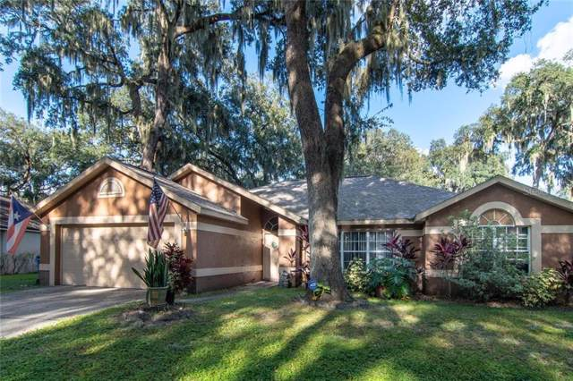 1818 Staysail Drive, Valrico, FL 33594 (MLS #T3205147) :: Team Bohannon Keller Williams, Tampa Properties