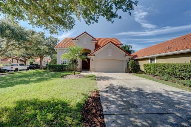 18924 Avenue Biarritz, Lutz, FL 33558 (MLS #T3205197) :: Team Pepka