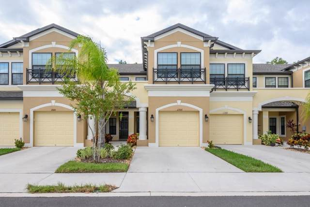11506 Crowned Sparrow Lane, Tampa, FL 33626 (MLS #T3205212) :: Carmena and Associates Realty Group