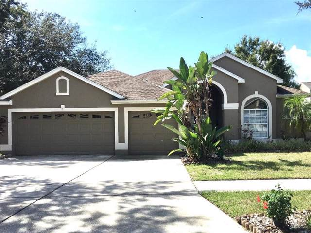 10737 Moss Island Drive, Riverview, FL 33569 (MLS #T3205265) :: Your Florida House Team