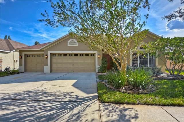 7734 Blue Spring Drive, Land O Lakes, FL 34637 (MLS #T3205281) :: Team Suzy Kolaz