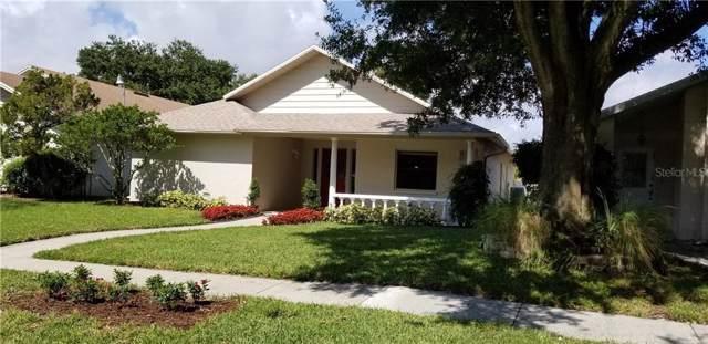3411 Pico Drive, Tampa, FL 33614 (MLS #T3205296) :: Team Suzy Kolaz