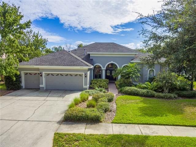 20700 Broadwater Drive, Land O Lakes, FL 34638 (MLS #T3205313) :: Team Pepka