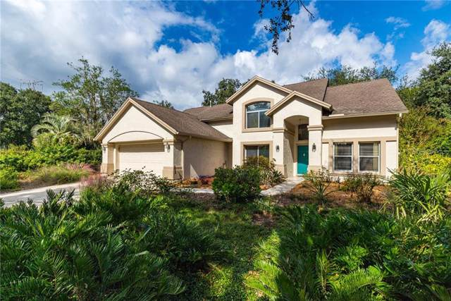 16102 Camelot Court, Tampa, FL 33647 (MLS #T3205317) :: Rabell Realty Group
