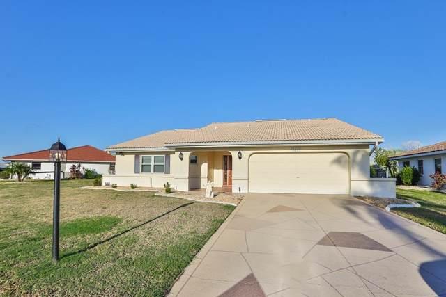 1809 Wolf Laurel Drive, Sun City Center, FL 33573 (MLS #T3205325) :: Bustamante Real Estate