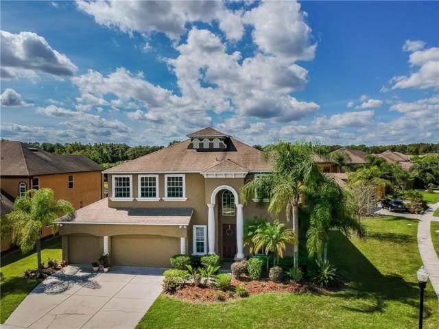 3218 Evening Breeze Loop, Wesley Chapel, FL 33544 (MLS #T3205366) :: The Robertson Real Estate Group