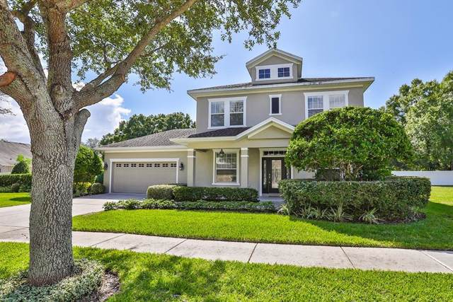 6410 Sea Lavender Lane, Tampa, FL 33625 (MLS #T3205374) :: 54 Realty