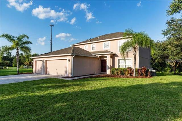 17109 Dillard Court, Lutz, FL 33559 (MLS #T3205437) :: Carmena and Associates Realty Group