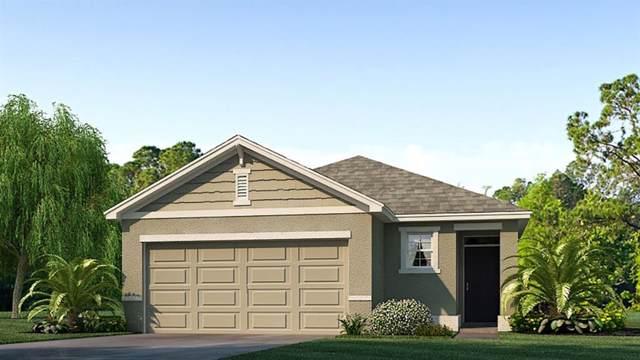 6571 Seaway Drive, Brooksville, FL 34601 (MLS #T3205443) :: Armel Real Estate