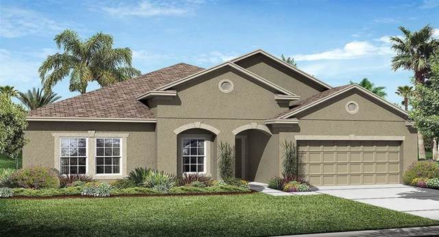 3565 Vega Creek Drive, Saint Cloud, FL 34772 (MLS #T3205454) :: Griffin Group